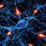 Maladies neurodégénératives