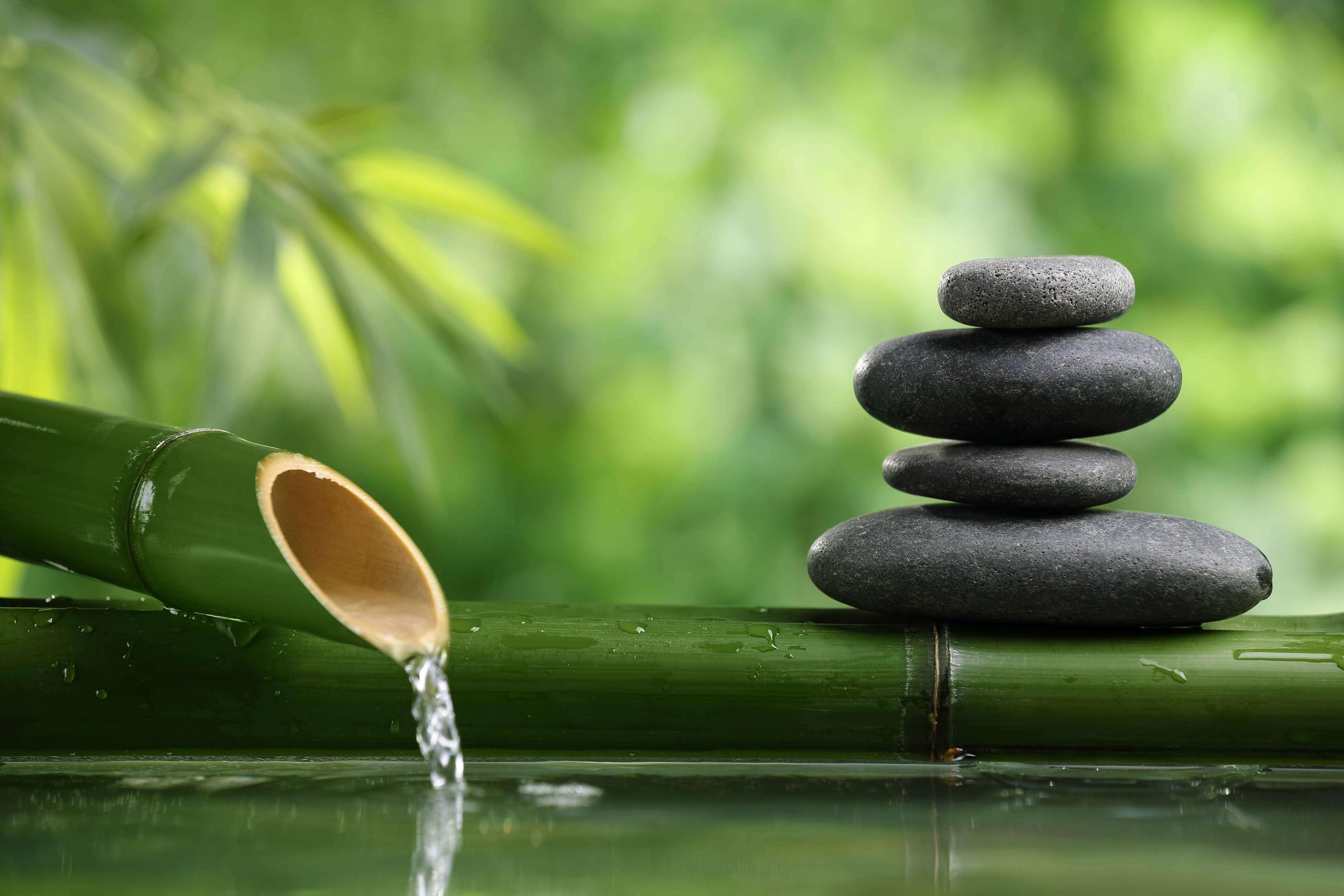 La fibromyalgie sant vitalit vitality and health - Salon toilettage zen attitude ...