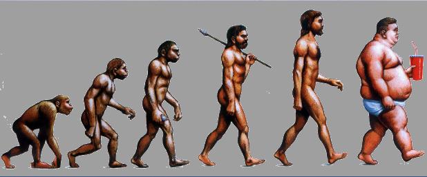 Evolution of Obesity copie